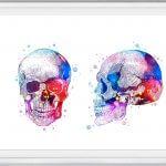 cuadros de cráneos