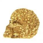 fotos de cráneos